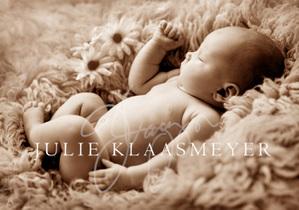 img 3740 Welcome Babies...