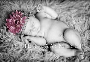 img 3867 Welcome Babies...